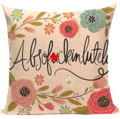 Absof*ckinlutely Pillow Cover