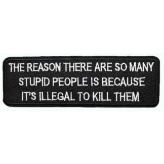The Reason There Are So Many Stupid People... Iron-On Patch